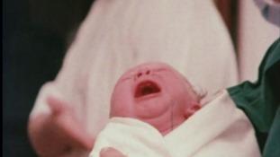 World's first IVF baby celebrates 40th birthday.