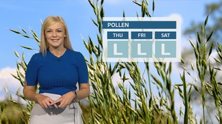Pollen Count: Remaining low for the next few days