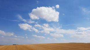 Cumulus clouds over fields