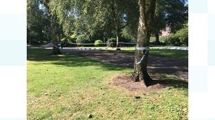 Inquiry after bodies found in park