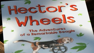 The book about Hector and his adventures