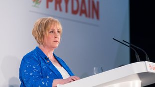 Suzy Davies AM at conference