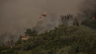 More than a thousand firefighters in Portugal tackle major wildfire in Algarve region