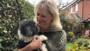 Dog owner desperate to find her pet's stolen ashes