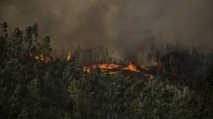Wildfires rage on in Portugal and Spain
