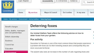 Lewisham Council's website offers advice of how to stop Fox problems
