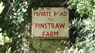 pinstraw farm