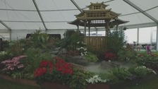 pic of garden display