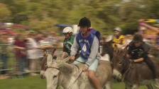 Return of the Donkey Derby