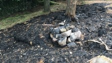 This is what caused the huge Roaches fire