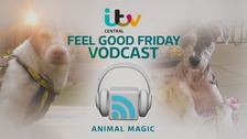 Feel Good Friday: Animal Rescue