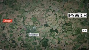 The animals were stolen from a field near Lindsey in Suffolk