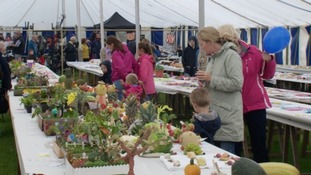 Guernsey's North Show begins today
