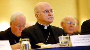Archbishop Carlo Maria Vigano called on the Pope to resign