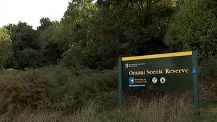 Omaui Scenic Reserve in New Zealand.