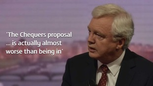 David Davis quit his role as Brexit secretary in protest at the PM's Chequers plans.