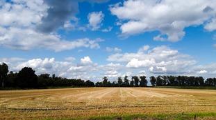 Sunny day in Cambridgeshire.