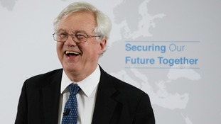 David Davis may win his Canada-style Brexit deal