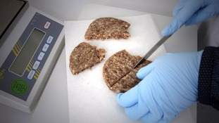 The tests will reveal no more traces of horse DNA, but the tests are only on 1/4 of processed beef products