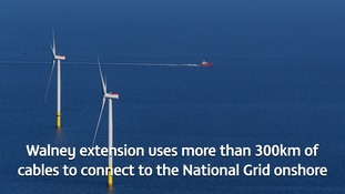 pic of wind farm