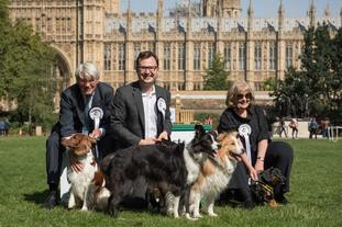 Alex Norris with his dogs Corona and Boomer,  second-placed Scarlet belonging to Andrew Mitchell MP, left, and third-placed Gooseberry with Dame Cheryl Gillan