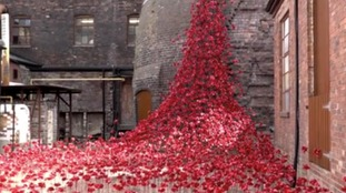 Thousands visit WW1 poppy sculpture tribute