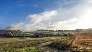 Countryside near Letchworth Garden City.