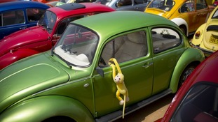 Volkswagen said it has no immediate plans to revive the Beetle again.