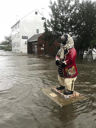 Tropical Weather North Carolina
