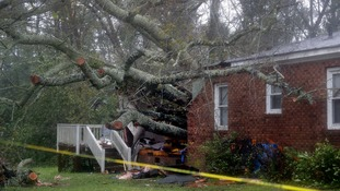 A falling tree killed a woman and her child in their home.