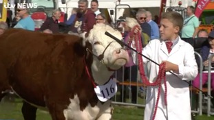 Thousands flock to first day of annual farming festival