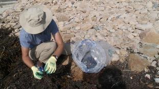 Dozens volunteer to clean up Guernsey's coastline
