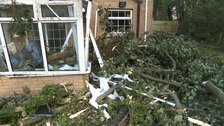Lucky escape after tree crashes through conservatory