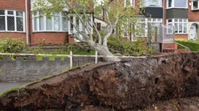 A tree fell on a house in Wensleydale Road, Handsworth.