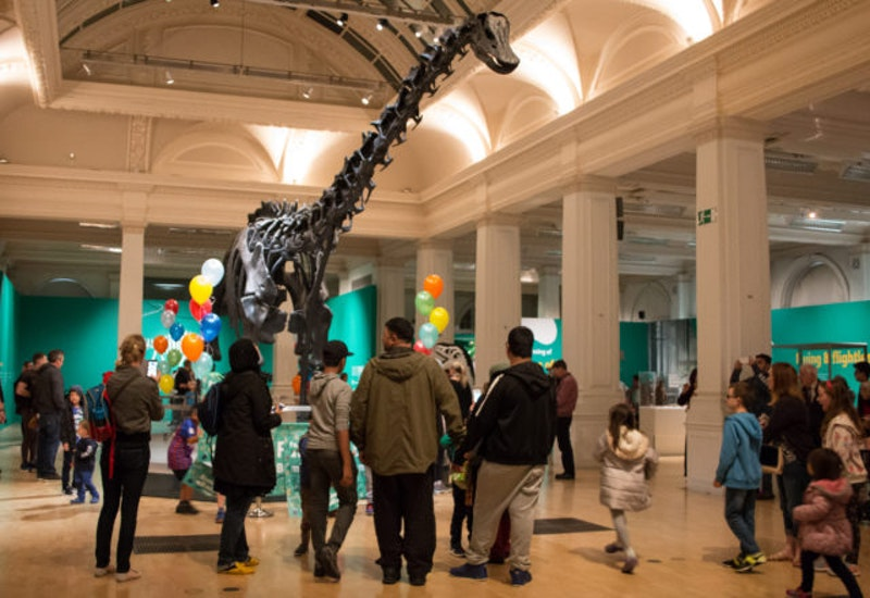 Natural History Museum Visitor Numbers