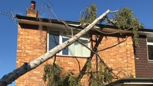 Storm Bronagh: Trees down & power cuts
