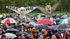 Dorset campaigner on People's Walk for Wildlife