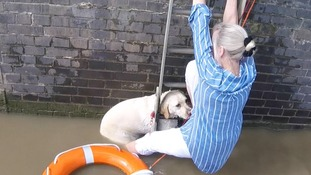 Woman clings to ladder as she tries to rescue her dog
