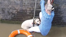 Dog and owner rescued from fast-flowing River Thames