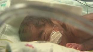 Baby number three - Cash
