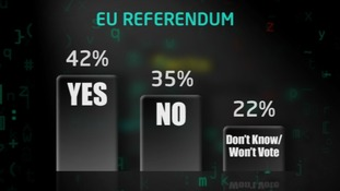 EU poll graphic