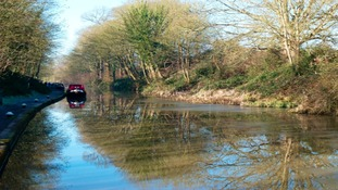 Grand Union Canal, just above Hatton