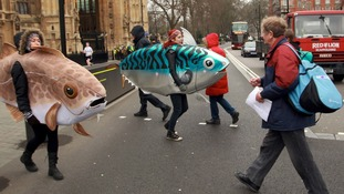 Campaigners marching outside Westminster to urge ministers to increase the number of'marine conservation zones.'