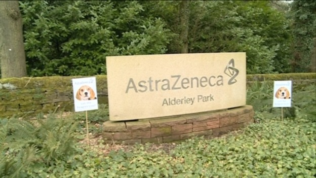 Animal rights' campaigners put up posters outside Astra Zeneca in Cheshire.