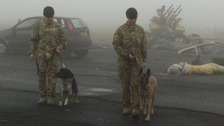 Two of the soldiers and their dogs preparing to deploy