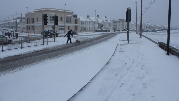Person and dog crosses snowy road in Worthing