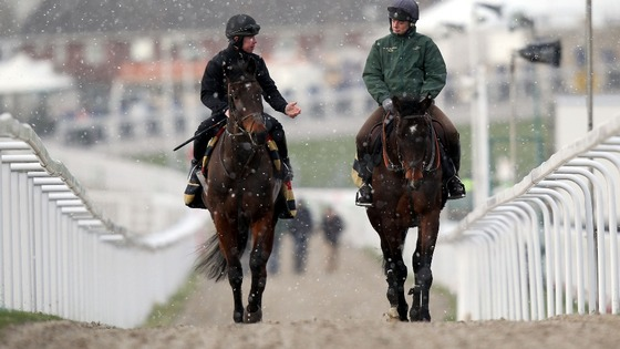 Sizing Australia (left) and Sizing Europe make their way to the gallops