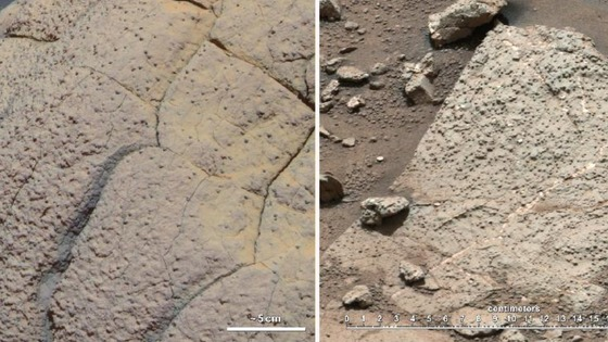 An analysis of a rock sample collected by NASA's Curiosity rover