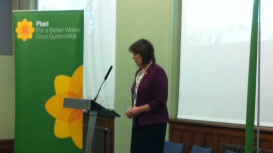 Leanne Wood 15 March 2013
