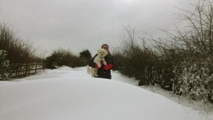 An owner holds their dog in the snow.